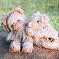 Furry Friends by Anita Hubbard