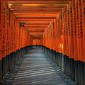 Fushimi Inari Taisha Shrine In Kyoto, Japan by Ivan Batinic