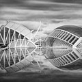 Futuristic Architecture Of Modern Valencia Spain In Black And Wh by Carol Japp