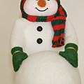 Fuzzy Snowman    Holiday Card 1 by Robert Joseph