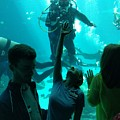 Ga Aquarium Scuba by Rick Lecture