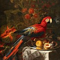 Gabriello Salci  Fruit Still Life With A Parrot by Gabriello Salci