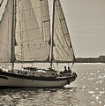 Gaff Rigged Ketch Cutter Sailing The Charleston Harbor by Dustin K Ryan