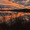 Gainesville Sunset 2386w by Ricardo J Ruiz de Porras