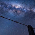 Galactic Kiwi On A Barbed Wire by Leith Robertson
