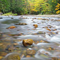 Gale River - Franconia New Hampshire  by Erin Paul Donovan