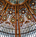 Gallery Lafayette Ceiling by Louise Fahy