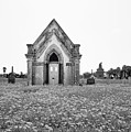 Galveston Old City Cemetery by Steven Michael