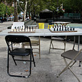Game Of Chess Anyone by Terry Wallace