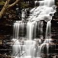 Ganoga Falls by Larry Ricker