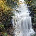 Ganoga Falls by Philip LeVee