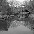Gapstow Bridge - Central Park - New York City by Holden Richards