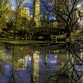 Gapstow Bridge In Central Park by Nick Zelinsky