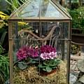 Garden 44 by Joyce StJames