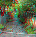 Garden Alley - Use Red-cyan 3d Glasses by Brian Wallace