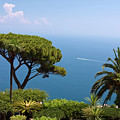 Garden And Bay Of Naples by Sally Weigand