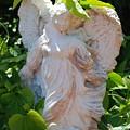 Garden Angel by Rob Hans