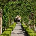 Garden Arbor Path by Carol Groenen