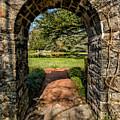 Garden Archway by Adrian Evans