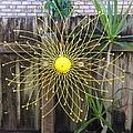 Yellow Sunflower Garden Art by Karen Moren