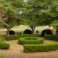 Garden At Colonial Heights by Patricia Montgomery