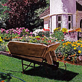 Garden At Patio Lane by David Lloyd Glover