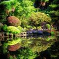 Garden At Shores Acres by Chris Sveen
