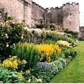 Garden at Stirling Castle