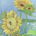 Garden Beauties by Lisa Bell