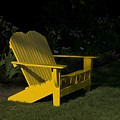 Garden Bench Yellow by Sara Stevenson