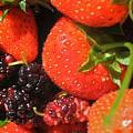 Garden Berries by Calvin Nelson