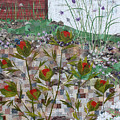 Garden Collage by Janyce Boynton