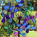 Garden Colored Fan by Cynthia Guinn