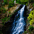 Garden Creek Falls by Rikk Flohr