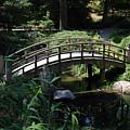 Garden Crossing by Kelvin Booker