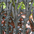 Garden District 2 by Randall Weidner