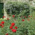Garden Door by Bruce Gourley