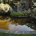Garden Fountain Pond by Richard Thomas