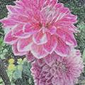 Garden Fresh  by Donna Cavanaugh