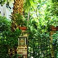 Garden Gate by Alan Hausenflock