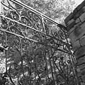 Garden Gate by Audrey Venute