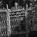 Garden Gate by Michael L Kimble