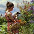 Garden Gatherings by Steve Henderson