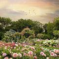 Garden Grace by Jessica Jenney