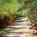 Garden Hideaway by Donna Bentley