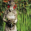 Garden In Bali by Dana Edmunds - Printscapes