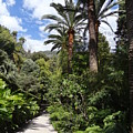 Garden In Menton by Andres Chauffour