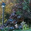 Garden Lamp Post by Lynn Chendorain