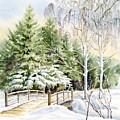 Garden Landscape Winter by Karla Beatty