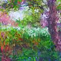 Garden Of Joy by Don Zawadiwsky